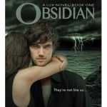 Obsidian pdf book cover