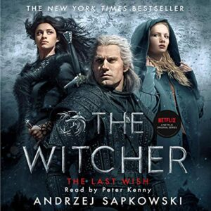 the witcher audiobook